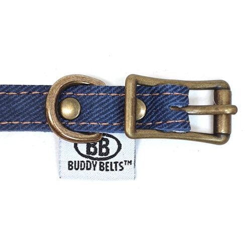 Buddy Belts Elite ID Collars (Blue Jean)