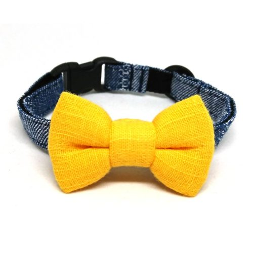 Sunshine collar with bowtie for cats and small dogs
