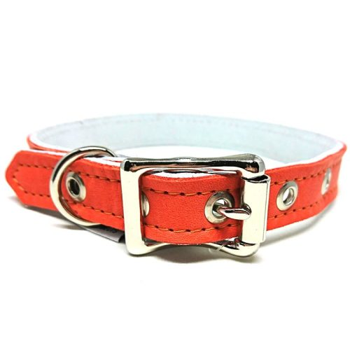 Buddy Belts Luxury ID Collars (Sunset)