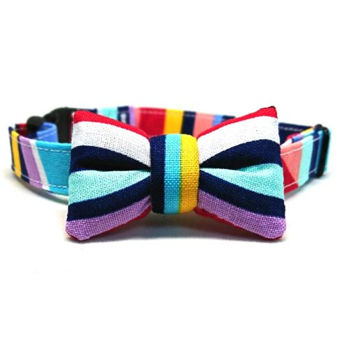 Technicolour collar with bowtie for cats and small dogs