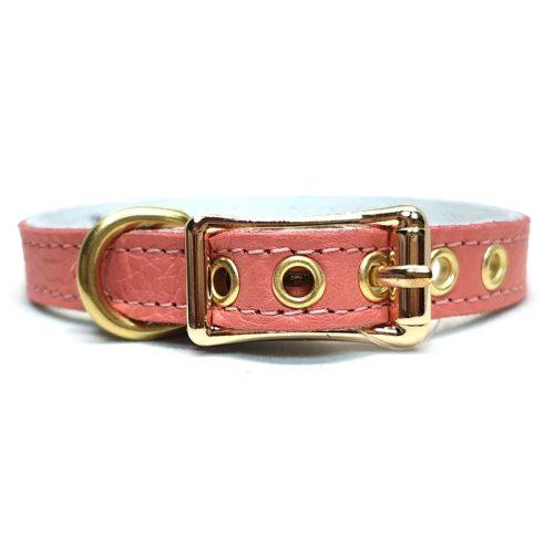Buddy Belts Elite ID Collars (Coral Dream)