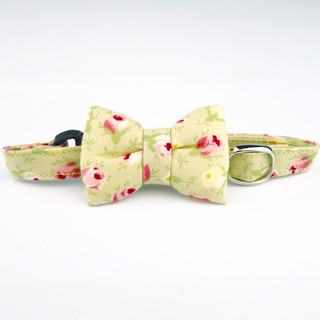 Beige Rose cat collar with bowtie