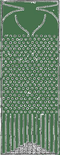 Galton's quincux