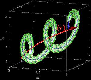 Géométrie du temps biologique : rythmes et protension