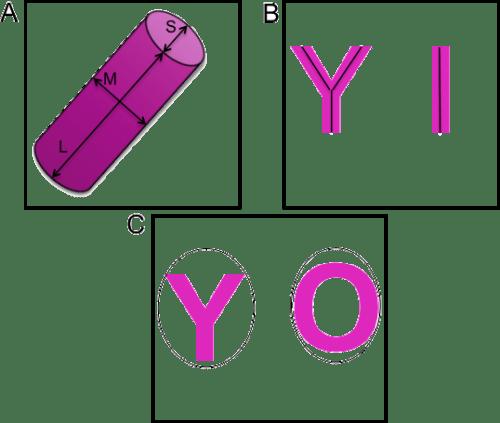 Visual representation of parameters.