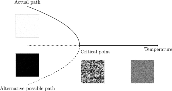Simulation of a phase transition in the Ising model.