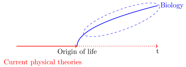 scheme of the relation between physics  and biology, from a diachronic point of view