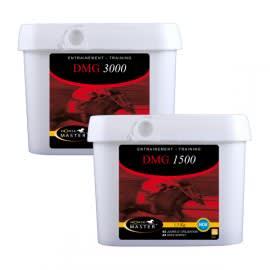 DMG 1500 / DMG 3000