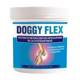 Doggy Flex Audevard