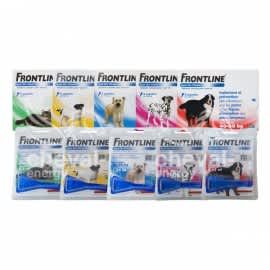 Frontline Spot On Merial Antiparasitaire Chat Antiparasitaire Chien