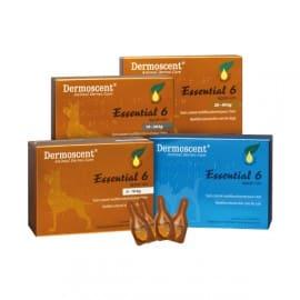 Dermoscent Essential 6 Spot On Biomeda Zootech Dermatite Chien Dermatite Chat