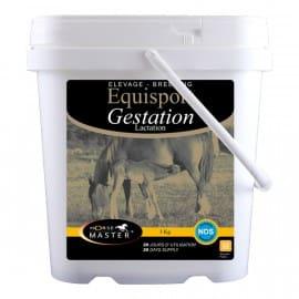 Equisport Gestation Lactation Horse Master