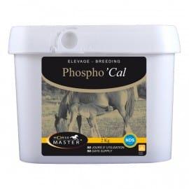 Phospho Cal Horse Master