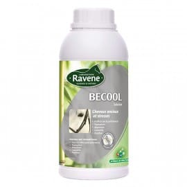 Becool Solution Ravene