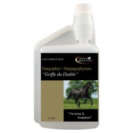 "Hargophyt ""Griffe du Diable"" Horse Master"
