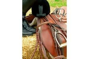 Matériel Équitation