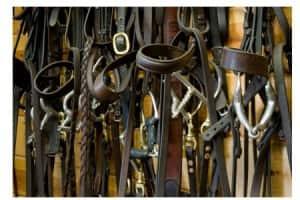 Nettoyage & Entretien du Matériel d'Équitation