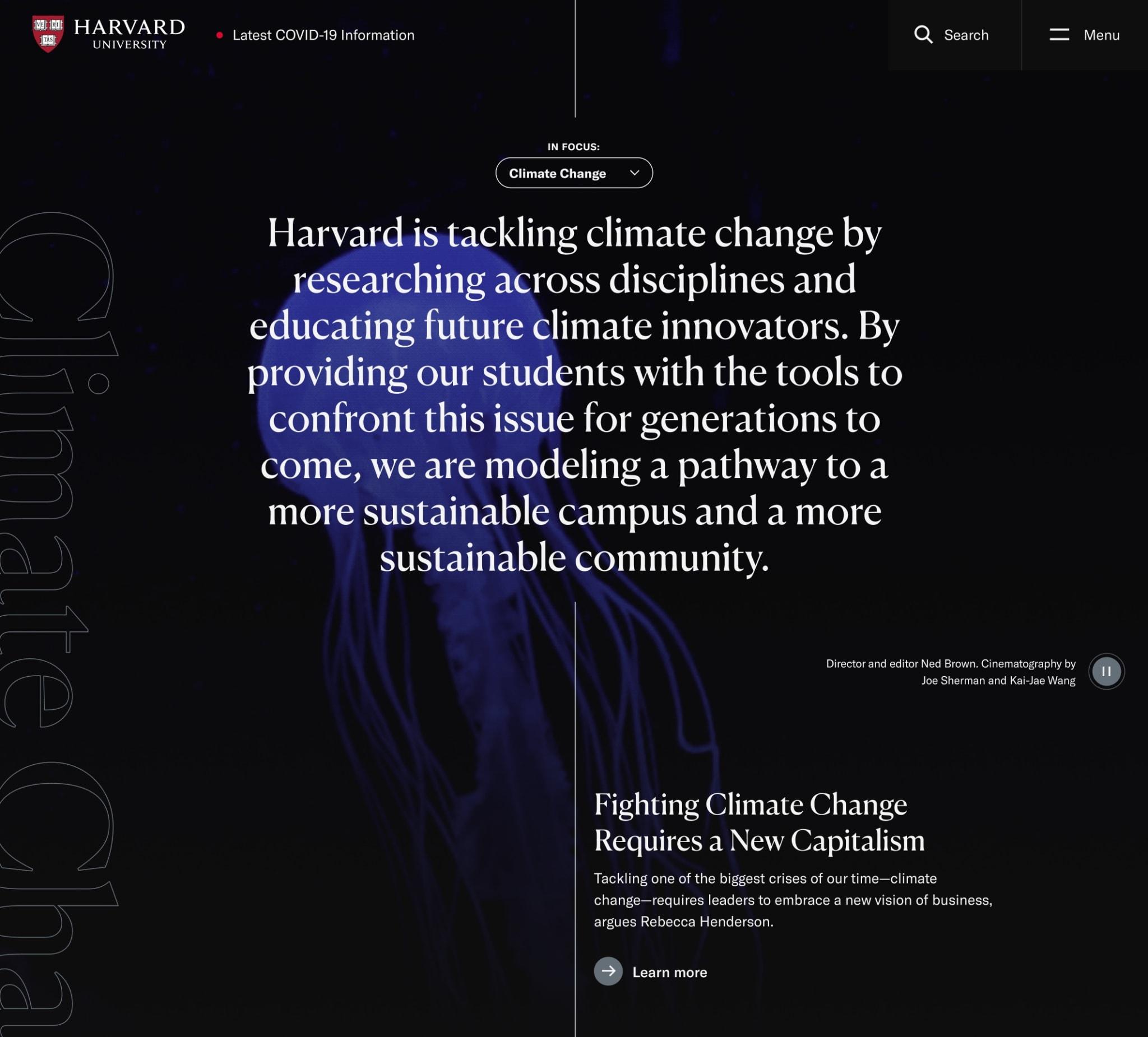 Harvard university homepage feature animated jellyfish.