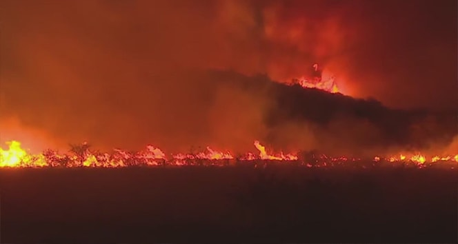 Arjantin'de 15 bin hektar ormanlık alan kül oldu