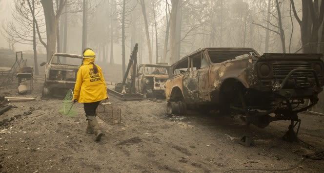 ABD'deki orman yangınlarında ölü sayısı 33'e yükseldi