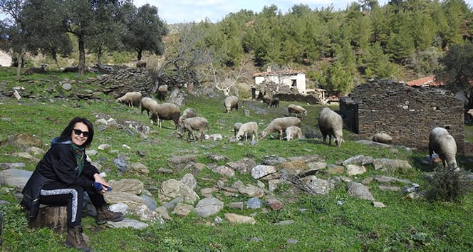2 asırlık köy, koyunlara kaldı