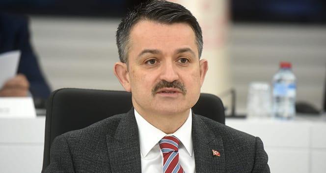 Bakan Pakdemirli: 'Türkiye büyük mega projelere imza atan bir ülke oldu'
