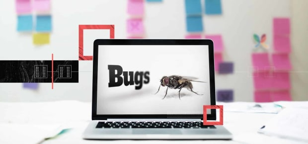 What are Software Bugs and What Do They Want?