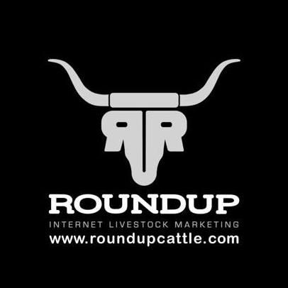 Round Up Cattle Internet Livestock Marketing Modus Partner Logo