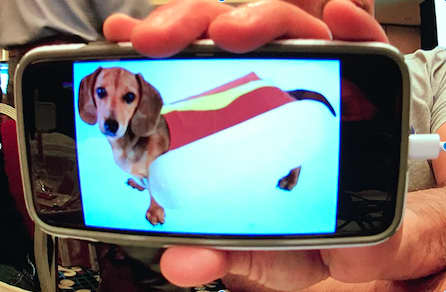Intro to Amazon DeepLens -- hotdog?