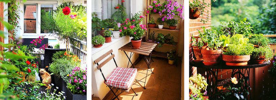 Grüne Balkondeko mit Pflanzen