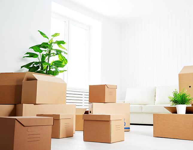 Basics für die erste eigene Wohnung