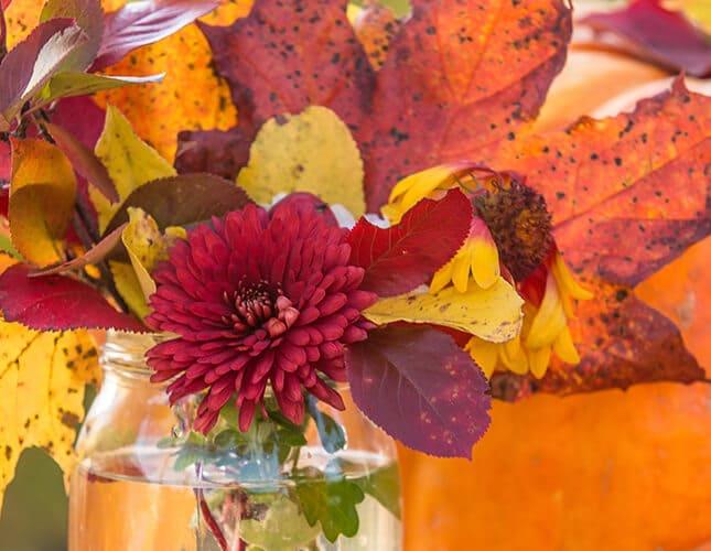 Schöne Herbstdeko für deinen Garten