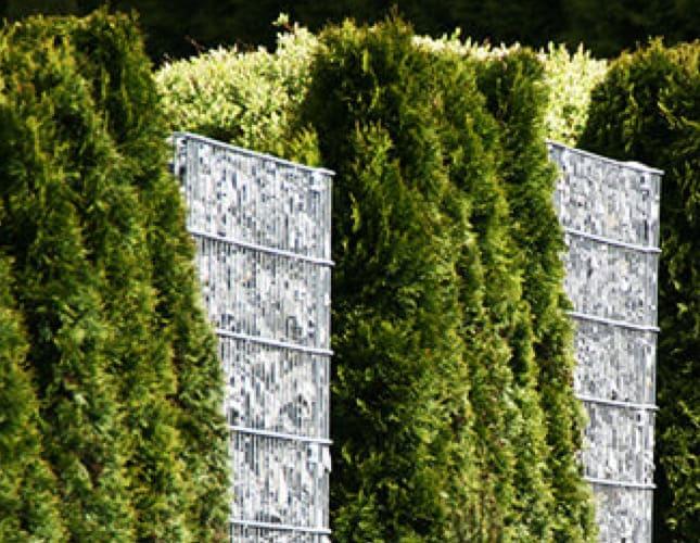 Sichtschutz-Ideen für die Terrasse