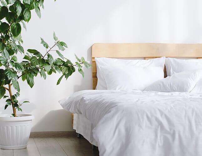 Die richtige Bettdecke für Sommer & Winter