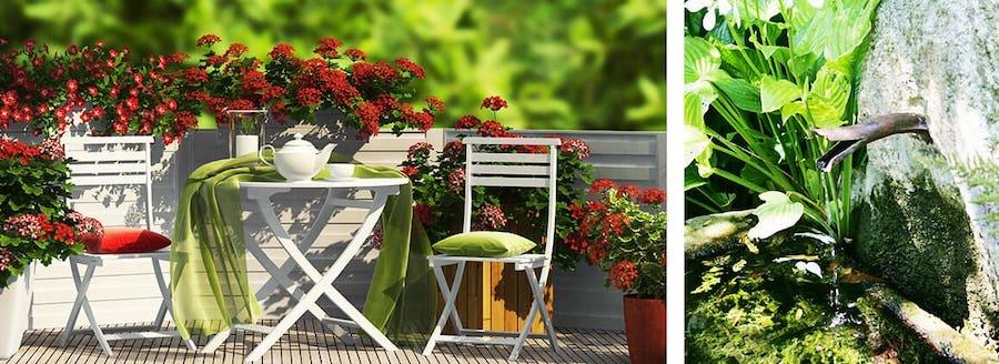 Verschönere deinen Balkon mit einem Mini-Teich