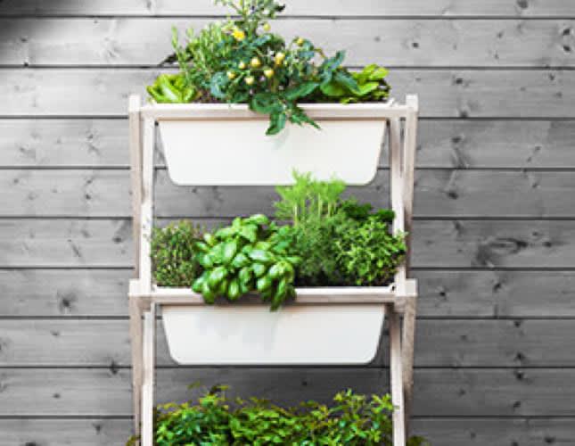 Einen vertikalen Garten für den Balkon selber machen