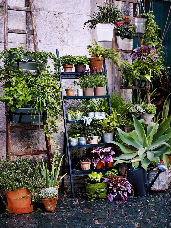 Vertikale Pflanzenwand für den Balkon