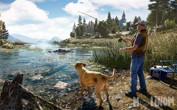far cry 5 co op