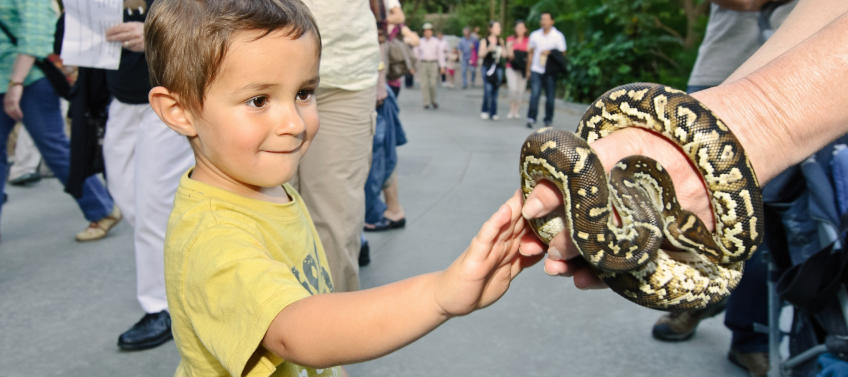 Best Zoos and Aquariums for Families in Los Angeles - Mommy