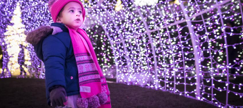 D.C.'s New Enchant Christmas Experience