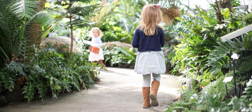 Lead Image For Family Guide To The United States Botanic Garden In D.C.