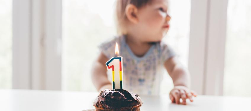 Lead Image For Where To Host Your Bay Area Babys First Birthday Party