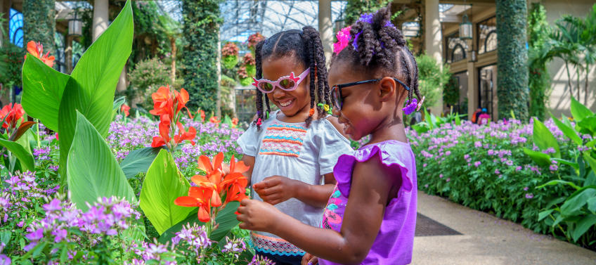 25 Best Things To Do With Philly Kids This Spring Mommy Nearest