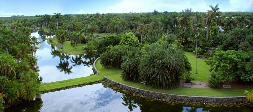 Best things to do at fairchild tropical botanic garden - Fairchild tropical botanic garden hours ...