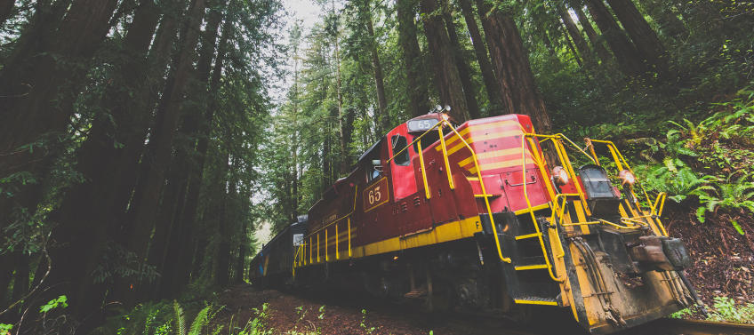 The Ultimate Guide to Train Outings in Northern California