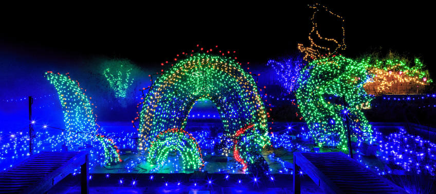 lead image for 8 Best Places to See Holiday Lights in D.C. - Best Places To See Holiday Lights In The Washington, D.C. Area