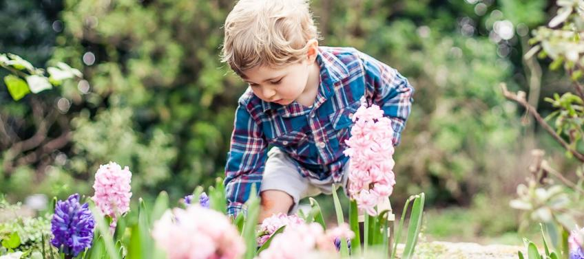 6 best gardens for families to visit in the bay area mommy nearest