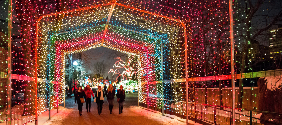 Christmas Things To Do In Chicago.10 Things To Do In Chicago On Black Friday Besides Shop