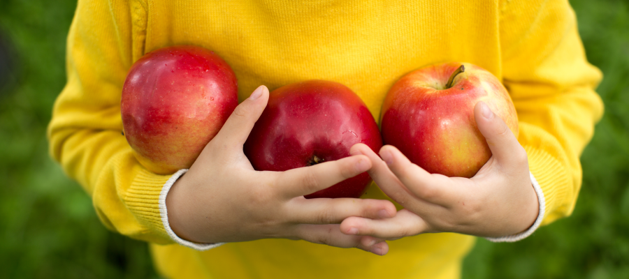5 Places To Go Apple Picking Near Los Angeles Mommy Nearest