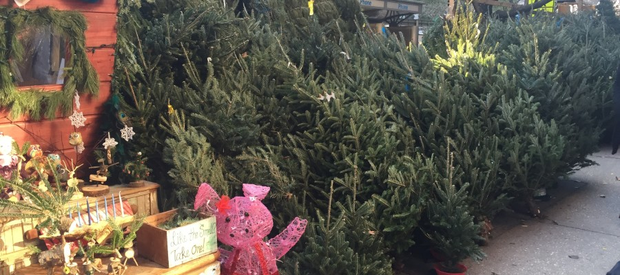 lead image for how to buy a christmas tree in new york city - Buy Christmas Tree